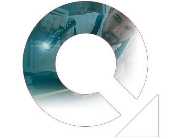 Quitty: die günstigen Kammerjäger in Ihrer Nähe