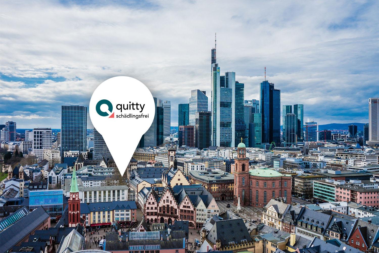 Quitty Schädlingsbekämpfung in Frankfurt