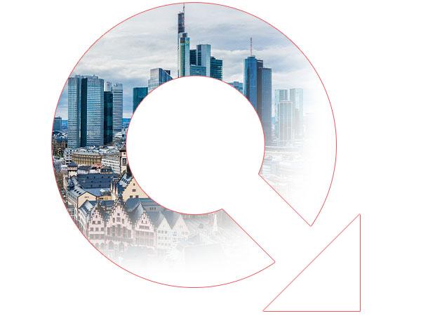 Schädlingsbekämpfung Kammerjäger Frankfurt