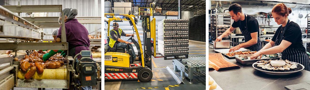 Schädlingskontrolle ist in der Lebensmittelproduktion, Logistik und Verarbeitung vorgeschrieben